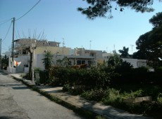 Plot with old house for sale in the Lambi