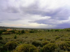 Land for sale in Pili, Kos.