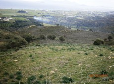 Land for sale in Kardamena with new reduced prices than 190.000 € to 150.000 €.