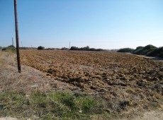 Land for sale in Antimacheia, Kos.