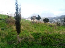 Land for Sale in Ammaniou, Kos.