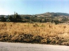 Land for sale in Psalidi, Kos with new reduced price from the 80,000 € to 45,000 €.