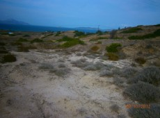 21 acres plot for sale in Mastichari, Kos