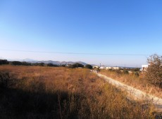 Land for sale in Zipari, Kos with reduced price than 85.000 € to 65,000 €.