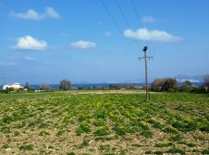 Land for sale in Messaria Kos.