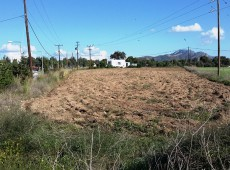 Land for sale in Antimachia, Kos.