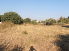 OPPORTUNITY: Land for sale in Kako Prinari, Kos.