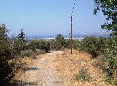 Landl for sale in the area of Asfendiou, Kos.