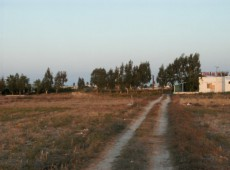 Land for Sale in Marmari - Kos